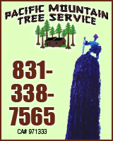 Pacific Mountain Tree Service