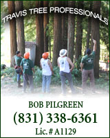 Travis Tree Professionals